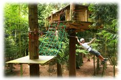 Tree House Zip Line   Treehouse Accessories   Adding the fun to your treehouse experience!