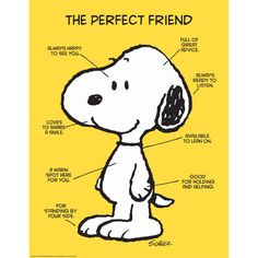 Peanuts The Perfect Friend Poster Classroom and Bulletin Board Decorations