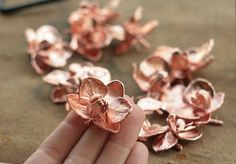 Natural orchid flowers copper electroformedbotanical