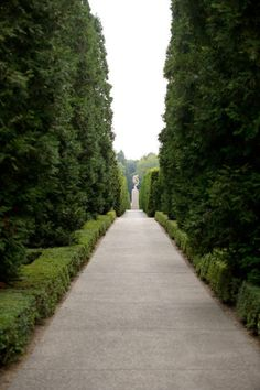 Epically Proportioned Formal Garden Path, with Oversized Hedges and Neo Classical Sculpture.