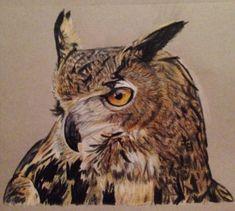 Owl artwork by Tiffany Mootrey Eagle Owl drawing Owl Artwork, Owl Pictures, Birds Of Prey, Art Forms, Drawings, Tiffany, Animals, Type 1, Digital Art