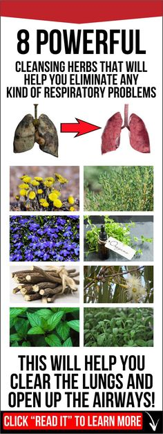 In this article, we are going to present you 8 cleansing herbs used for centuries in the Chinese medicine as natural remedies for treating many medical conditions and diseases. These herbs can repair the damaged lungs and treat infections and they will improve the overall health.