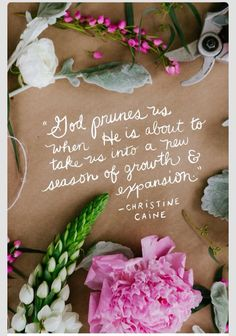 God prunes us when he is about to take us to a new season of growth and expansion! - Christine Caine, Women of Faith speaker Bible Quotes, Me Quotes, Faith Quotes, Biblical Quotes, Religious Quotes, Spiritual Quotes, Encouraging Sayings, Cheesy Quotes, Biblical Womanhood