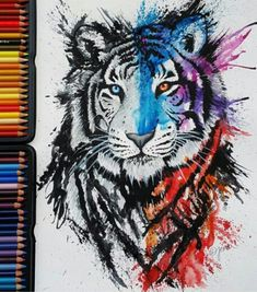 Realistic tiger drawing. Colours: black, blue, purple, red, orange