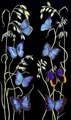 Phone Backgrounds, Wallpaper Backgrounds, Blue Butterfly, Nativity, Butterflies, Moth, Patterns, Animals, Wallpapers