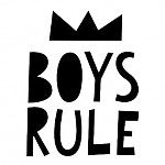 Mini Learners boys rule poster A3