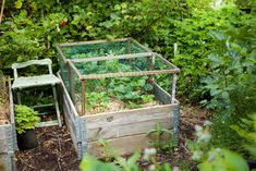Secret Garden, Greenhouse