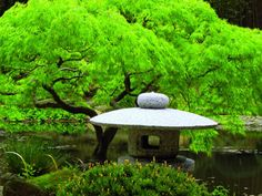 Simple Style: The Subtle Appeal of Japanese Gardens