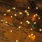These revolutionary fairy light strands have 36 tiny warm white LEDs (about the size of a grain of rice) on ultra thin diameter wire.