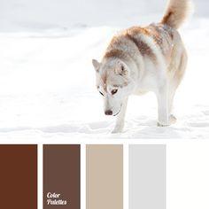 Color Palette #3710