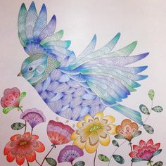 Animal Kingdom Adult ColoringColoring BooksPencil