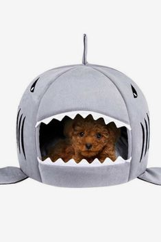 The Likedog Shark Pet House Washable Cave Bed is a great gift for a cat-lover or a dog-lover. It's especially perfect for new pets to help them feel cozy and warm with their own private, safe space. Dog Halloween Costumes, Animal House, Dog Houses, Bed Covers, Dog Bed, Pet Care, Cute Dogs, Shark, Pet Supplies