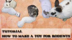 Tutorial: Heusocke für Nagetiere herstellen - Tutorial: Make a hay sock ...   Heute zeigen wir euch, wie man ganz einfach und mit nur ein paar Handgriffen aus einem paar kaputter Socken, ein tolles Spielzeug für Nager herstellen kann. Und das beste, es kostet fast nichts. Wir wünschen euch viel Spaß beim ansehen (^_^)  #kaninchen #bunny #rabbit #usagi #lapin #youtube #tutorial