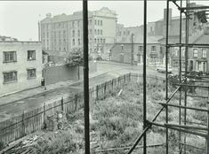 Barchester Street East London, Utility Pole, Roots, Street, Walkway