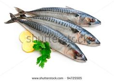Fish Stock Photos, Images, & Pictures | Shutterstock