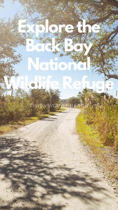 Explore the Back Bay National Wildlife Refuge in Virginia Beach Starburst Earrings, Beautiful Park, Park Homes, The Dunes, Atlantic Ocean, Virginia Beach, Ocean Beach, Norfolk, East Coast