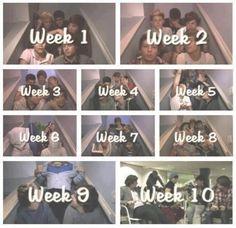 Awww :( i miss the video diaries :(