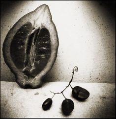 'Fresh Fruit Still Life I - No.5' by Polish artist Edyta Wypierowska. Black and white pinhole (lensless) photograph, contact silver gelatine print, 20 x 20 cm. via Chris Keeney