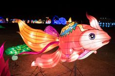A fish greets people near the entrance on the opening night of the China Lights lantern festival Friday, January 19, 2018, at Craig Ranch Regional Park in North Las Vegas. The festival, which features nearly 50 silk and LED light displays comprised of over 1000 elements, runs through February 25th. CREDIT: Sam Morris/Las Vegas News Bureau