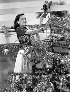 Maureen O'Sullivan decorates her Christmas tree 1939 Old Hollywood Stars, Vintage Hollywood, Classic Hollywood, Christmas History, Christmas Photos, Christmas Tree, Maureen O'sullivan, Christmas Preparation, Glamour Shots
