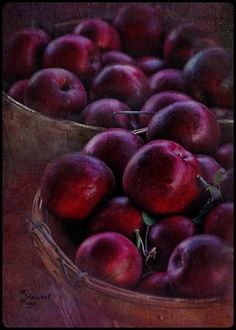 I just love this rich deep PLUM color! Plum Wine, Burgundy Wine, Color Splash, Colour Pop, Shades Of Burgundy, Burgundy Color, Magenta, Plum Purple, Fruits And Veggies