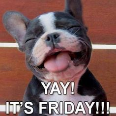 Image result for Happy friday have a great weekend