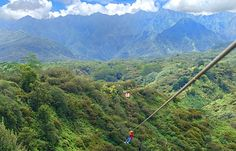 Zip lining in puerto Vallarta, Mexico was amazing. Yes, I did this