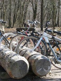 Bike rack made of a tree trunk! Utrecht, Garden Inspiration, Design Inspiration, Tree Logs, Hillside Landscaping, Bike Parking, Bike Storage, Farm Gardens, Furniture