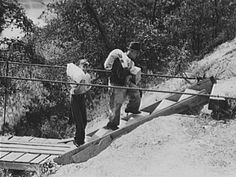 Swingers in cumberland ky Cumberland, Maryland swingers, Cumberland swingers lifestyle at