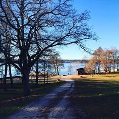 Lahti. (Municipio de Finlàndia). #ocitrip #ocitripclientes #naturaleza #vacaciones2015 #holidays #finlandia #viatges #viajes