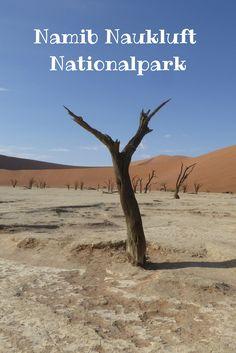Der Namib Naukluft National Park ist ein MUSS auf jeder Namibia Reise. Bisher kannte ich diese imposante Dünenlandschaft nur aus Reiseführern und Reportagen. Es ist die älteste Wüste der Welt und hier gibt es die höchsten Sanddünen der Welt.