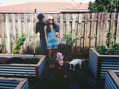 ohdeardrea: Our Garden (Progress)