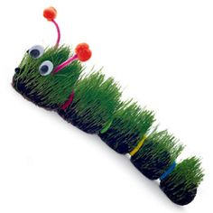 Hairy Caterpillar using grass seed, knee high stocking, colored pony tail holders, googly eyes, and pipe cleaner.