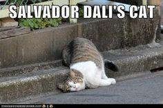 Surrealist Cat