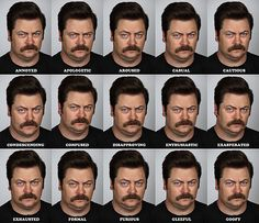The many faces of Ron Swanson. #ParksandRec
