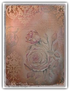 Chocolate Baroque Design Team: An old rose (by Miranda)