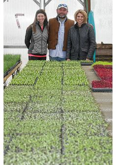 Fifth generation grows into farm business | ThisWeek Community News