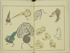kitao-masayoshi-illustrated-animals (7)