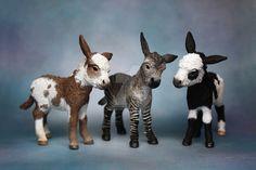 Custom Schleich Donkey Foals by VolpeArtica08.deviantart.com on @DeviantArt