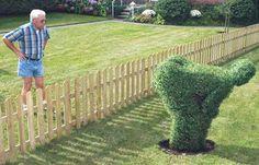 Neighbor fun topiary!