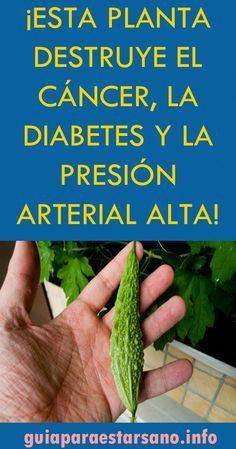 savchenko salud familiar vitaminas naturales minerales diabetes bajar de peso aptitud