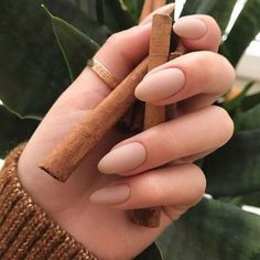 If you don't like fancy nails, classy nude nails are a good choice because they are suitable for girls of all styles. And nude nails have been popular in recent years. If you also like Classy Nude Nail Art Designs, look at today's post, we have col Matte Nails, Stiletto Nails, Pink Nails, Gradient Nails, Black Nails, Matte Black, Black Gold, Hair And Nails, My Nails