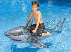 Celebrate Shark Week with your kids