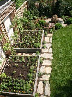 vegetable garden  | potager ! Hone ideas
