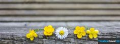 Cute Flowers Timeline Cover 850x315 Facebook Covers - Timeline Cover HD