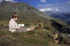 So jealous of the 'Marmot Whisperer'