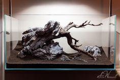 90x45x45cm Optiwhite Tank  Manzanita wood added