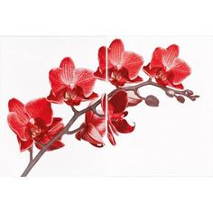 Azulejo Eliane Kit Forma Decor Orquídea, 33,5 x 45 cm - 2 Peças - taQi