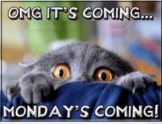 UGH it's here...... Weekends are the fastest part of the entire week..............