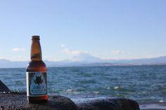 Enoshima beer in Enoshima with Fuji